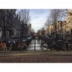 Amsterdam: 10/12
